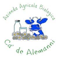 logo Alemanni