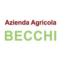 logo Becchi