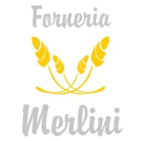 logo Merlini