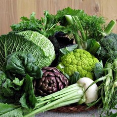 verdure-invernali