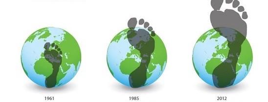footprints2