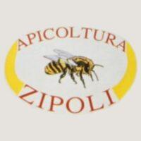 logo-zipoli-001