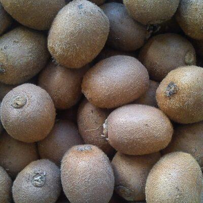 becchi-kiwi-piccoli-in-cassetta-5-kg