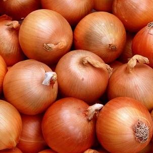 cipolla-dorata-1kg-2