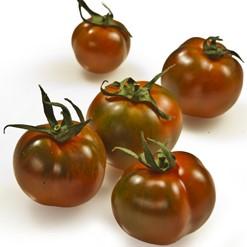 pomodoro-tondo-scuro