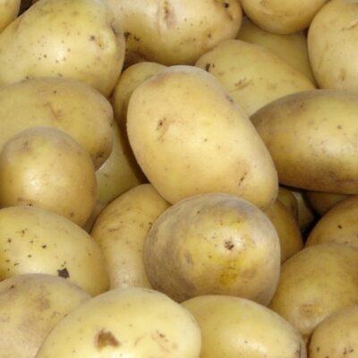 patate_bianche