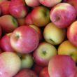 mele fuji piccole