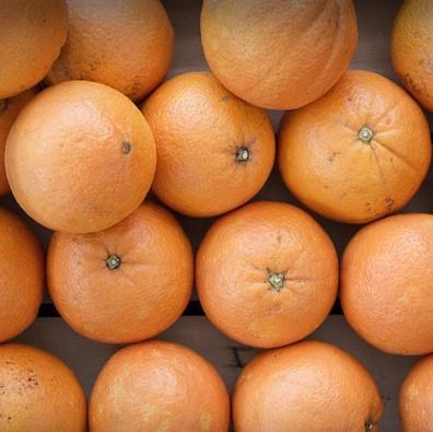 arance-bio-spremuta-16kg