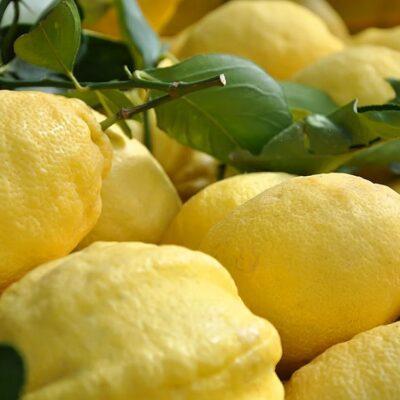limoni-bio-in-cassetta-10-kg