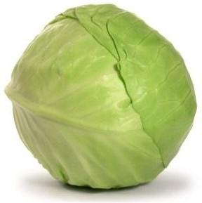 lortica-cavolo-cappuccio-verde-500gr