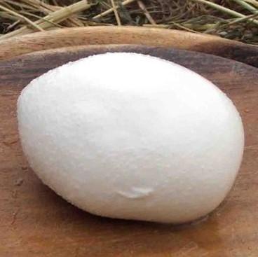 mozzarelle-bio-540-gr