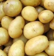 patate-bianche-di-vernasca-bio-2kg