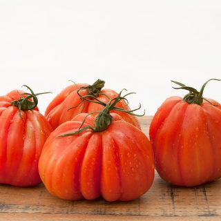 pomodori-cuore-di-bue-bio-1kg
