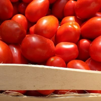 pomodori conserva
