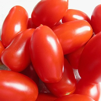 pomodori-perini-bio-1kg-2