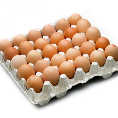 uova-allevamento-allaperto-30pz