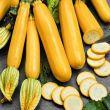 zucchine-gialle-500gr